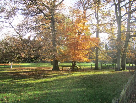 Herriard Park